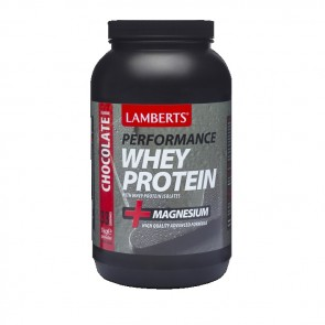 whey protein chocolate powder 1000gr